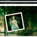 Page d'accueil du site de Véronique Sanson